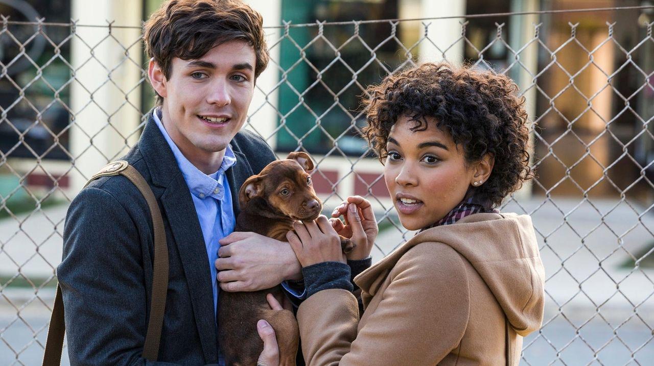 A Dog's Way Home' nuestro top 12 de las mejores películas de perros