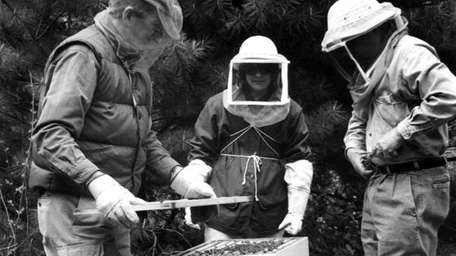 Wave Hill is offering a beginner's beekeeping seminar.