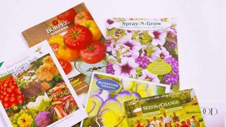 Garden catalogs can help ease winter's chill (Feb.