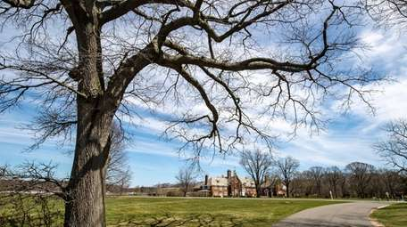 A view of Caumsett State Historic Park Preserve's