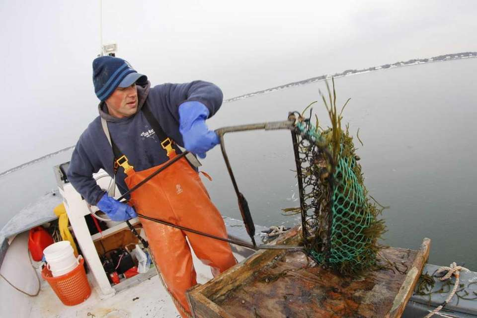 Nathan Andruski, scallop fishing in Peconic Bay, dumps