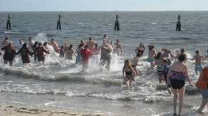 Dozens take the plunge into the Great South