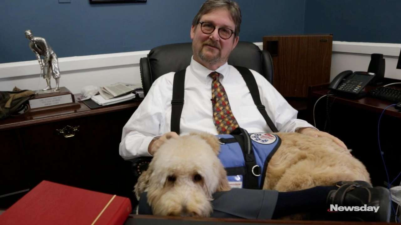 Judge Howard Sturim keeps a four-legged secret under