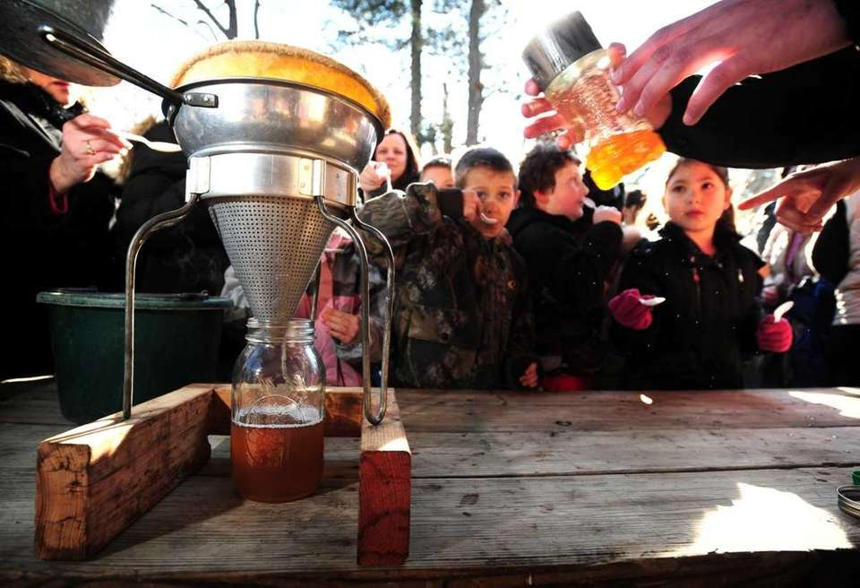 Children sample maple syrup made at the Hoyt