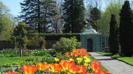 Spring in full bloom at Old Westbury Gardens