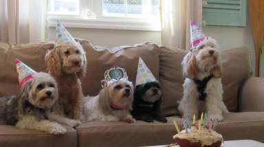 Maya, the princess' 11th birthday with her sisters