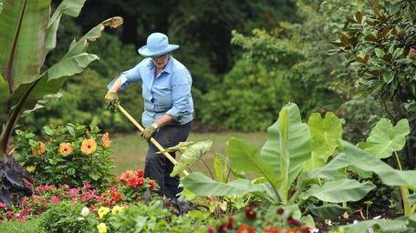 Nancy Warny at Clark Botanic Garden, where expert