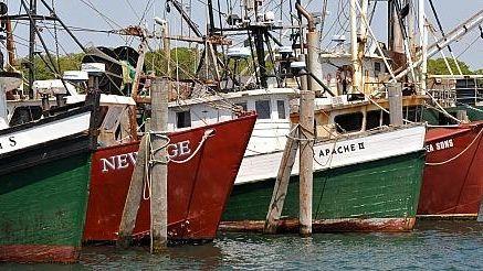 Fishing boats docked in Montauk. (May 2010)