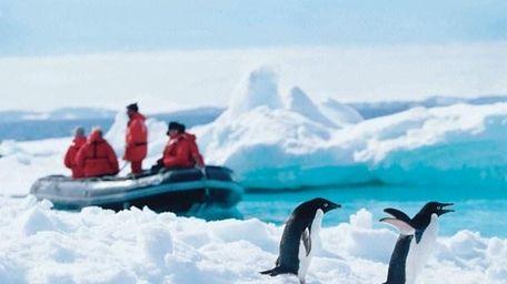 A view of Antarctica
