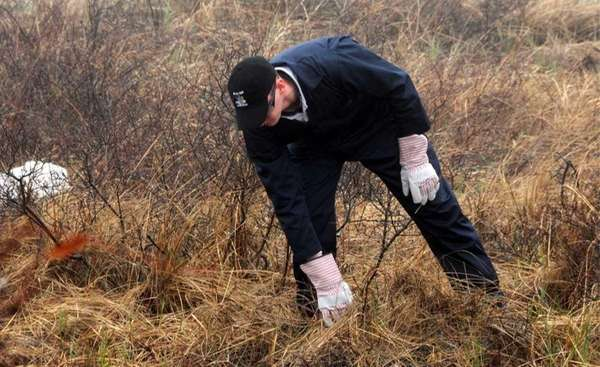 A file photo of State Police searching brush