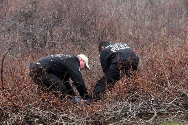 Nassau County police search in tangled brush along