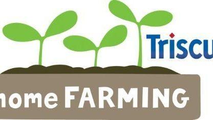Triscuit has declared April 12