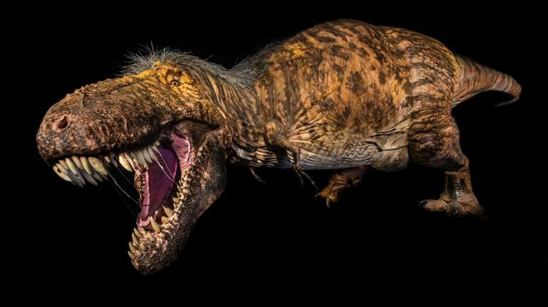 More dinosaurs are coming to the American Museum