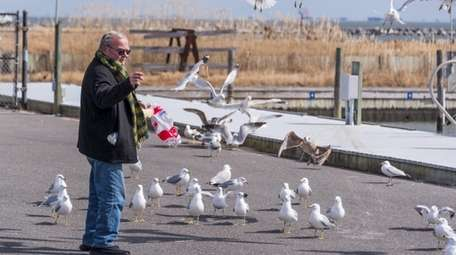 William McSweeney of Sayville feeds seagulls on a