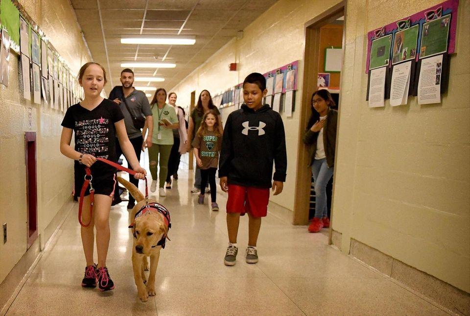 Schoolmates watch as Emma Brussell walks her Diabetic
