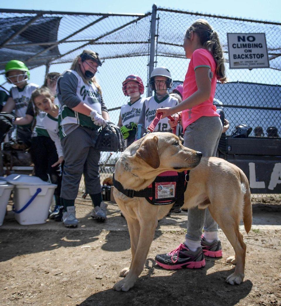 Emma Brussell brings her new Diabetic Alert Dog