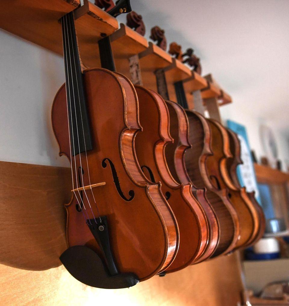 Violins hang on a rack in the workshop