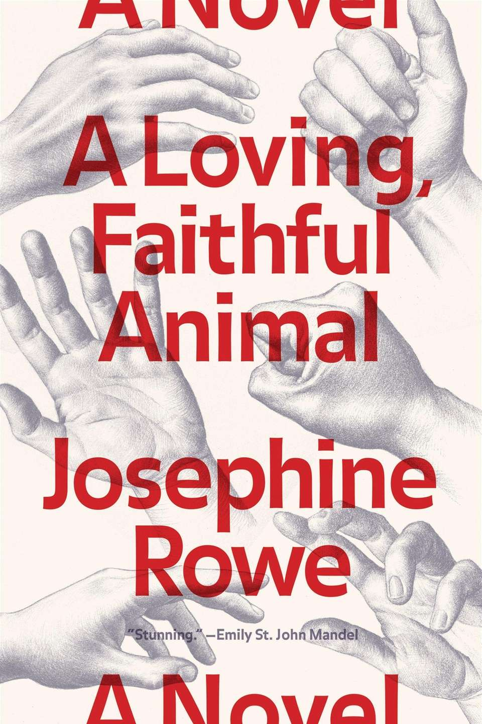 A LOVING, FAITHFUL ANIMAL, by Josephine Rowe. In