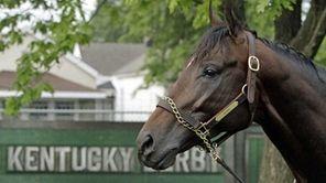 Kentucky Derby entrant Nehro waits for a bath
