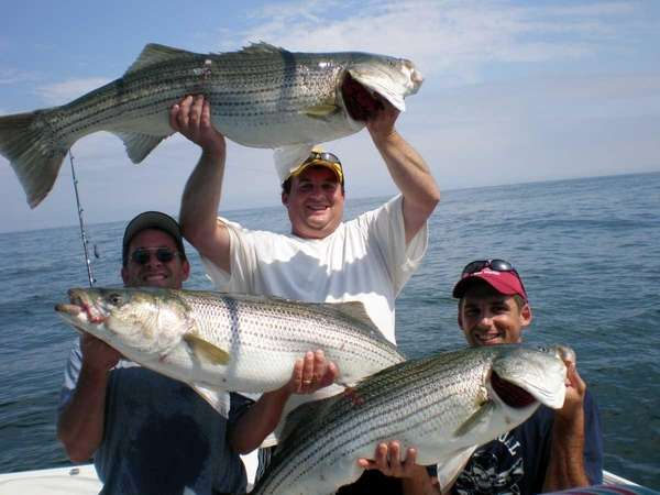 striped bass fishing reaches a boiling point | newsday, Fishing Reels
