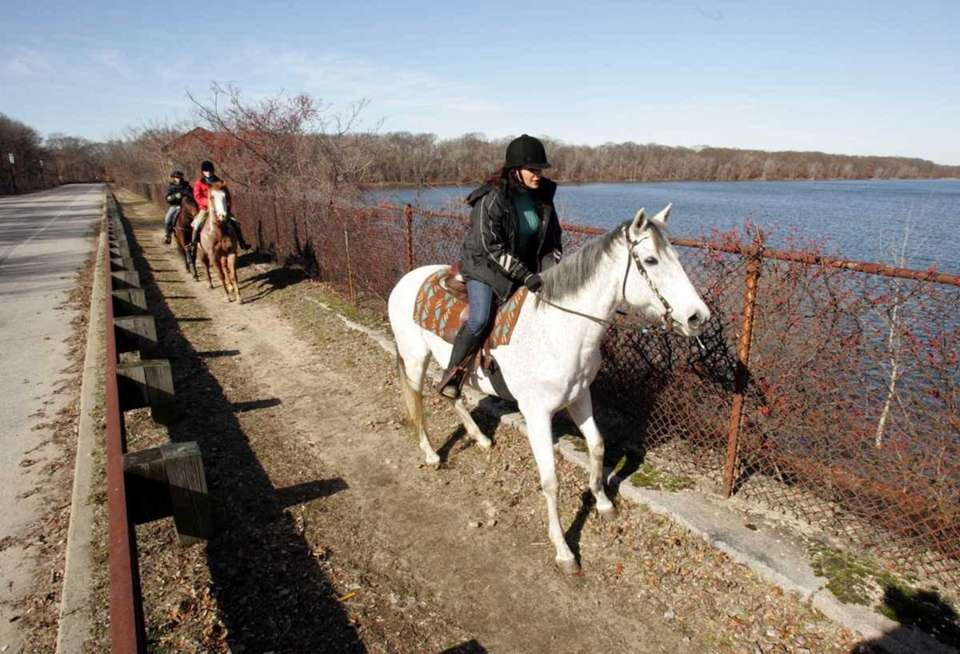Spend an hour trotting along the bridle paths