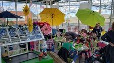 Dees' Nursery in Oceanside hosts many children's activities