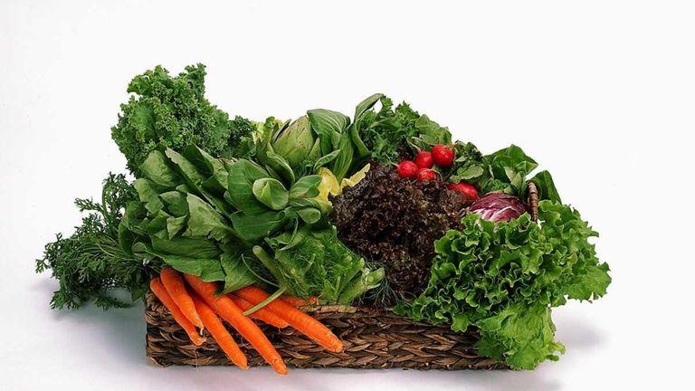 Vegetable plants start from heirloom seeds -- handed