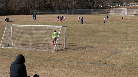 The Long Island Timberline Futbol Club soccer match
