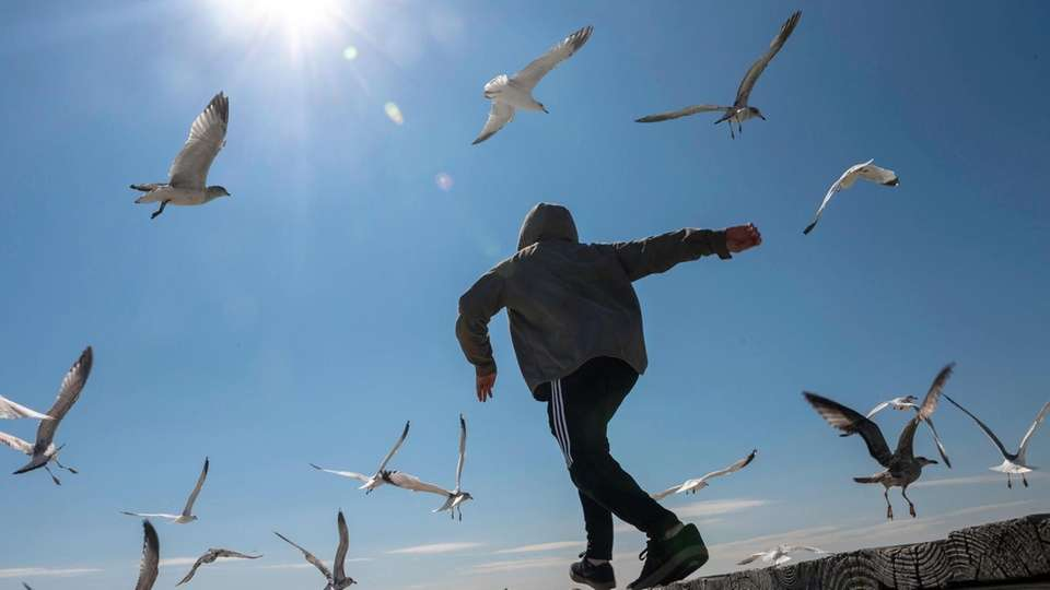 Sebastian Herrera, 14, of Freeport chases after seagulls