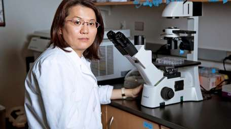 Lori Chan checks the cancer stem cell population