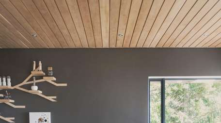 One of the biggest trends in ceiling treatments