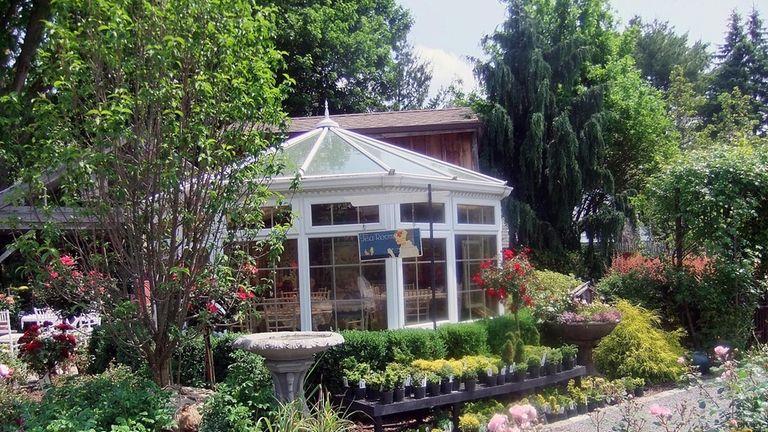 The Tea Room at Main Street Nursery, Huntington,