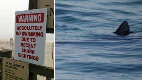 At left, a sign warns beachgoers of sharks