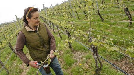 One Woman Wines & Vineyards owner Claudia Purita