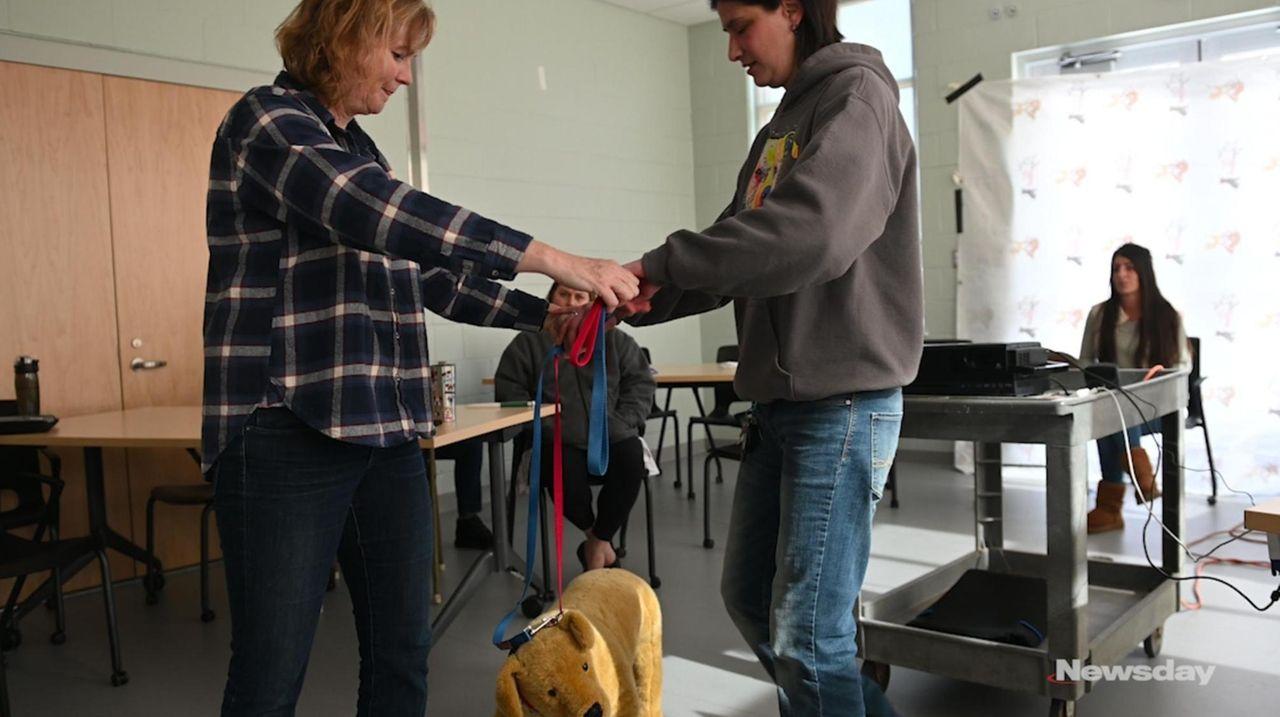 Babylon Animal Shelter hired animal expert Trish McMillan
