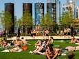 Sunbathers cover the lawn at Domino Park on