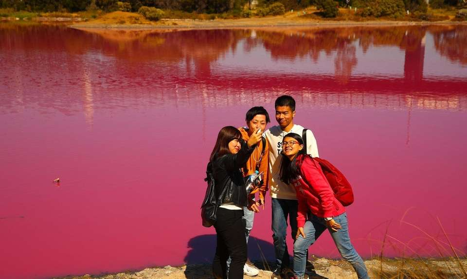 People take photographs of the pink lake at