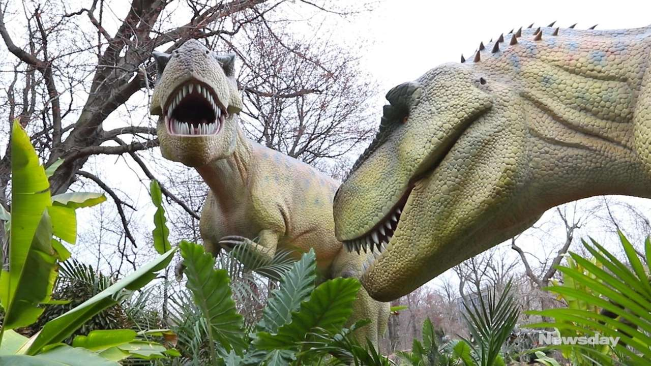 Forty ultrarealistic, life-sizeanimatronic dinosaurs will stompinto the Bronx