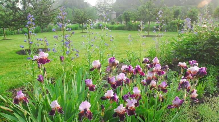 The grounds of Old Westbury Gardens during the