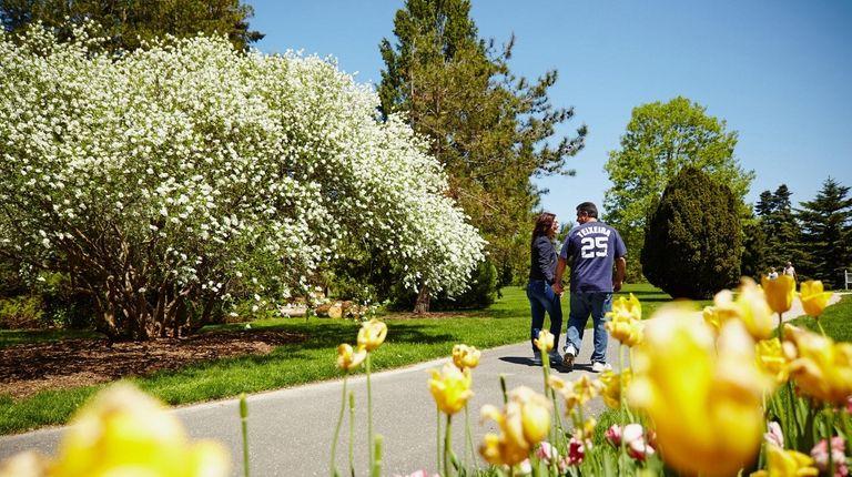 Bayard Cutting Arboretum in Great River will soon