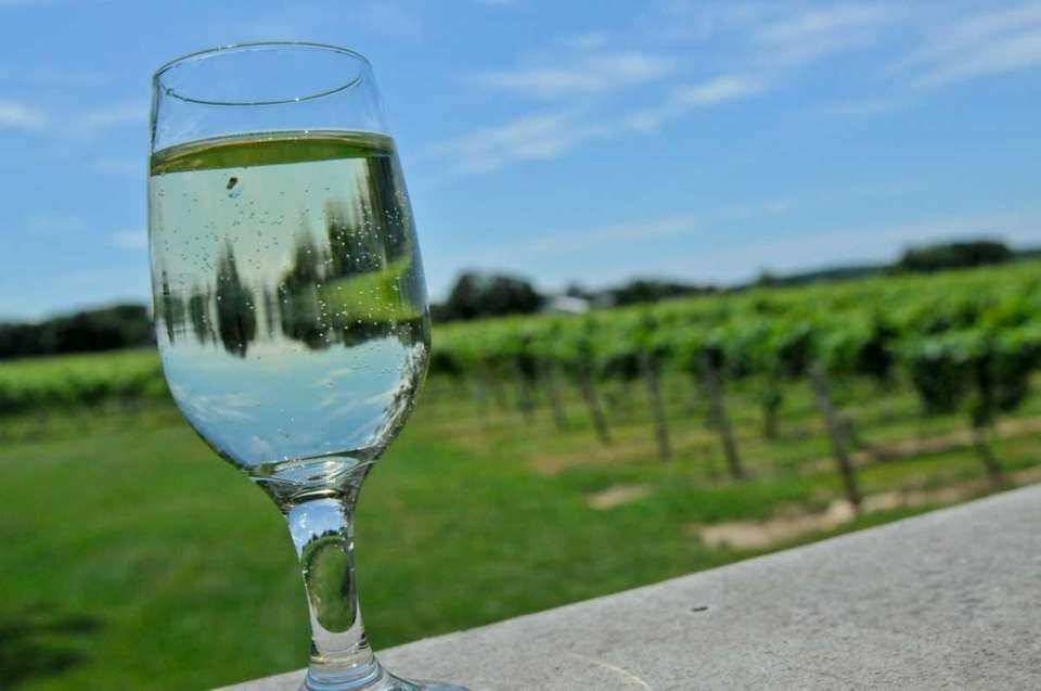 Palmer Vineyards is home to 65 acres of