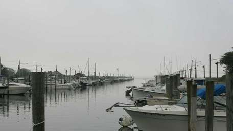 Marina 1 in Mastic Beach is home to
