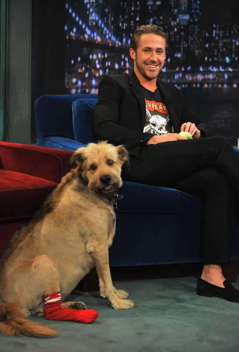 Ryan Gosling, along with his dog, George, visits