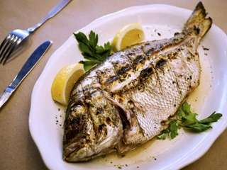 Tsipoura, freshly caught porgy, grilled on charcoal served