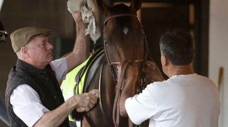 Trainer Richard Mandella grooms former Kentucky Derby entrant