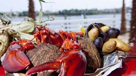 New England lobster with fingerling potatoes and grilled