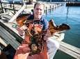 A fresh lobster dinner is practically a rite