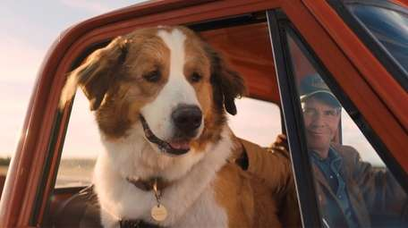 """Bailey (voiced by Josh Gad) in """"A Dog's"""