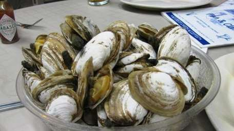 Steamers at Oyster Bay Fish & Clam. (Aug.