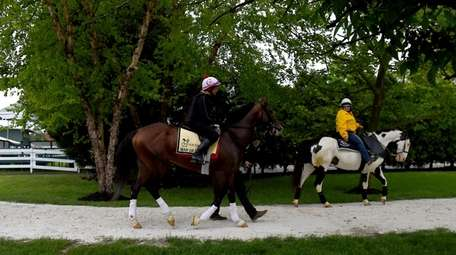 Preakness contender War of Will, with exercise rider